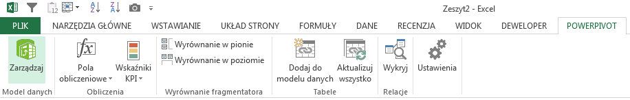 Co to jest PowerPivot.